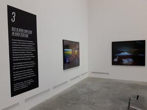 Vinyl gallery exhibit didactics presented alongside artists' pieces